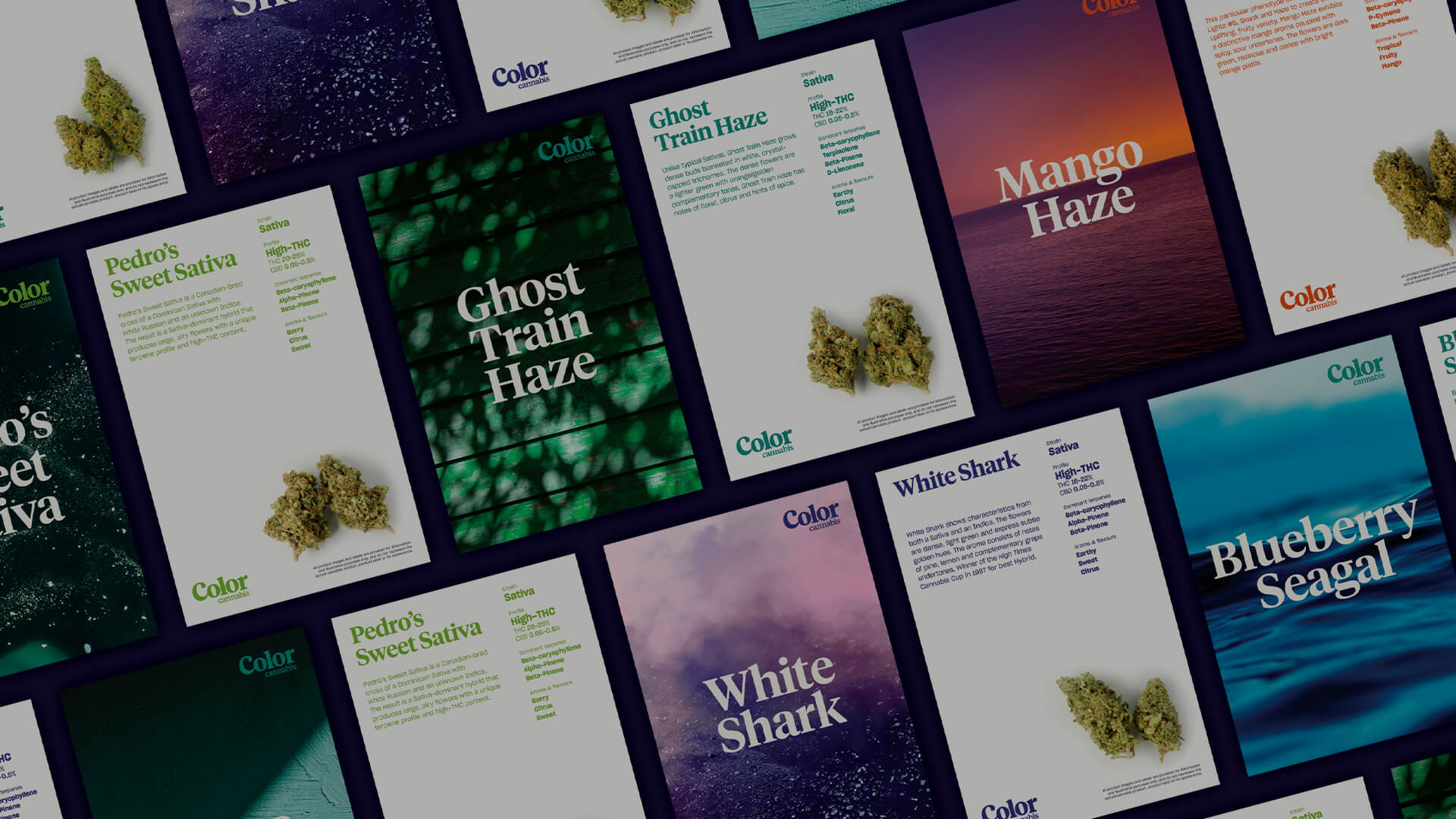 Color Cannabis